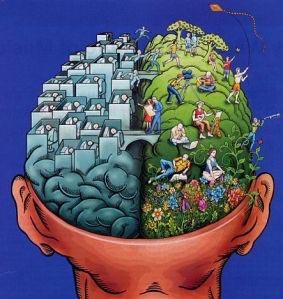 Hersenhelften%20copy